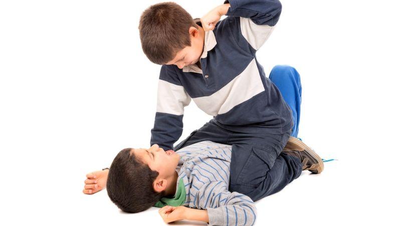 BASC Sistema de Evaluación de La Conducta de Niños